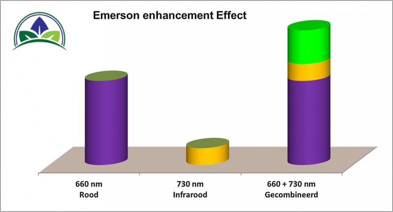 emerson-effect-op-wietplanten