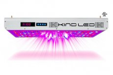 Kind Led K5 XL1000